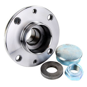 SNR Rear Wheel Bearing for Fiat Stilo, Doblo
