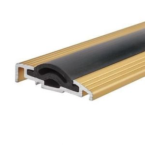 Sealmaster Cyclone Seal – 1000mm – TDG Threshold – Gold